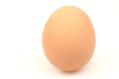 Egg. One brown egg on a white background Stock Photo