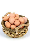 Egg Stock Photo