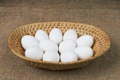 Egg. Stock Photo