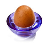 Egg. On a glass stand Royalty Free Stock Photo