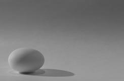 Egg. Single white egg alone in the corner Royalty Free Stock Photo