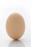 Egg. Isolated on a white background Royalty Free Stock Image