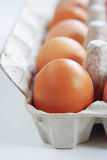 Egg. S in the box on white background Royalty Free Stock Photo