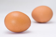 Egg Stock Photos