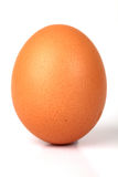 Egg. Brown Whole Egg Isolated On White Background Royalty Free Stock Photography