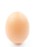 Egg. An egg on white background royalty free stock photo