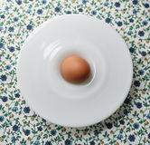 Egg. An egg in a small plate on a colorful floral tablecloth Royalty Free Stock Photos