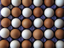 Egg. S in pattern in different colors Stock Photos
