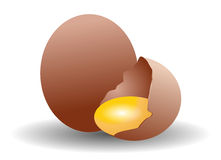 Egg stock illustration