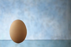 Egg Royalty Free Stock Photo