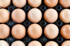 Egg. Background of  Egg food farm Royalty Free Stock Photo