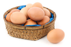 Egg. An egg in next to the egg basket Stock Photography