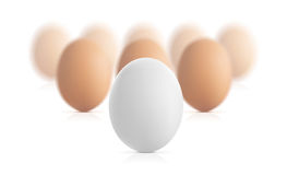 Egg(32).jpg Royalty Free Stock Image
