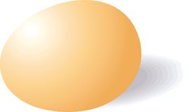 Egg Stock Images