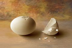 Egg. Partialy broken egg with half of an egg shell broken with little pieces over a nice kind of oil painting background stock photos