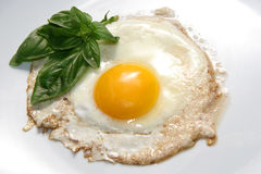 Egg. Fried egg on the table Stock Photos