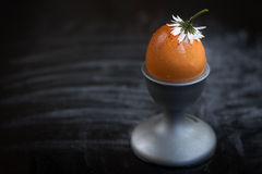 Egg. Brown egg in a cup on a black background Royalty Free Stock Photography