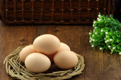 Free Egg Stock Photo - 38457550
