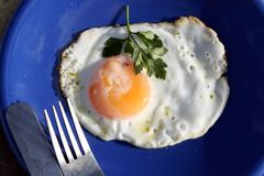 Egg. Close up of breakfast table Royalty Free Stock Photos