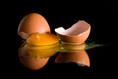 Egg. Yolk and broken chicken egg shells on black background with reflected image Stock Photo