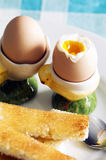 Egg. Soft boiled eggs on plate with toast Stock Photography