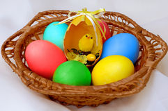 Egg 7. Colorful Easter eggs in basket still-life royalty free stock image