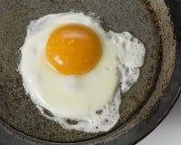 Egg1 Lizenzfreie Stockfotos