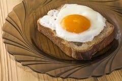 Egg3 Lizenzfreies Stockbild