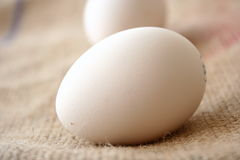 Egg. On jute stock photo