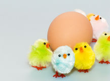 Egg Royalty Free Stock Photos