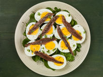 Egg and Anchovy Salad With Watercress. Against a Green Backgound Stock Photo