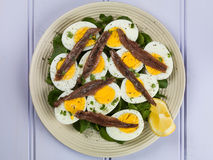 Egg and Anchovy Salad With Watercress. Against a Lilac or Purple Background Stock Image