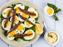 Egg and Anchovy Salad With Watercress. Against a Lilac or Purple Background Royalty Free Stock Photography