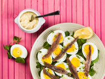Egg and Anchovy Salad With Watercress. Against a Pink Background Royalty Free Stock Photo