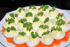 Egg appetizers. With light mayonnaise and parsley and carrots Stock Photography