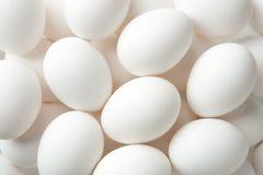Egg Background Royalty Free Stock Image