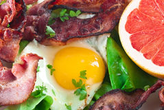 Egg Bacon Meal Royalty Free Stock Photography