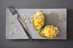 Egg baked in avocado with spring onion and alfalfa sprouts Royalty Free Stock Images