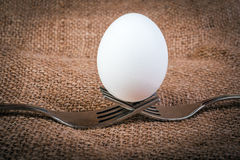 Egg balancing by two forks Royalty Free Stock Photos