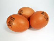 Egg with barcode Stock Photos