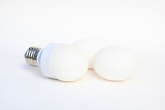Egg in the base of energy-saving bulb Stock Photo