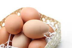 Egg in a basket Royalty Free Stock Photos