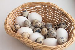 Egg basket Stock Photos