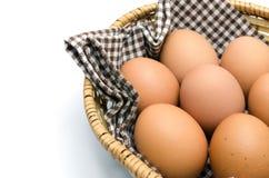 Egg in a basket Stock Photos