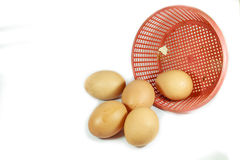 Egg with basket. Brown egg on white background stock photo