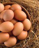 Egg in a basket on the dried grass Royalty Free Stock Images