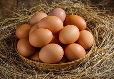 Egg in a basket on the dried grass Royalty Free Stock Photography