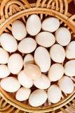Egg on basket Royalty Free Stock Photo