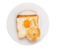 Egg In The Basket II Stock Photos