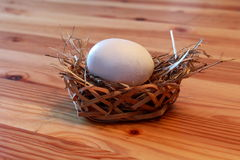 Egg in a Basket Royalty Free Stock Images